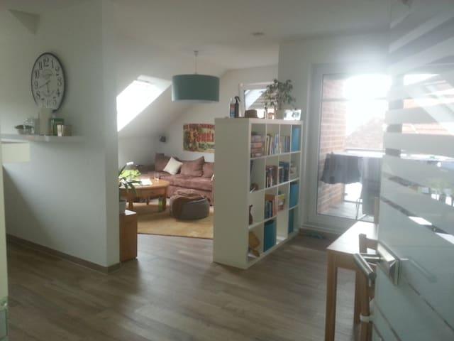 Zimmer frei - Haren (Ems) - Appartement