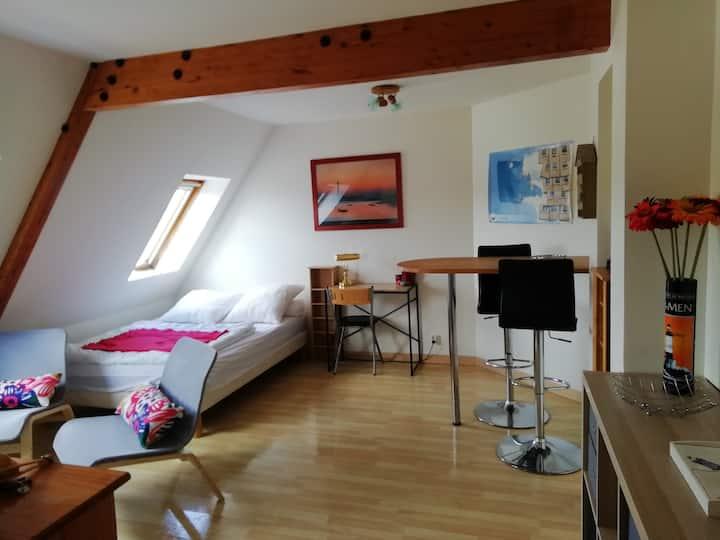 Studio meublé plage du Trez-Hir (Plougonvelin)