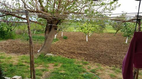 Köy de dinlenme ve doğal ürünler