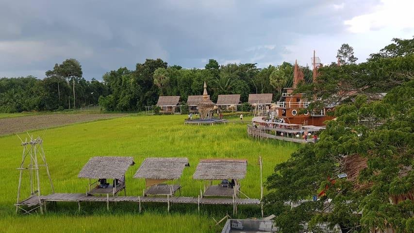 สำเภาไทย sampaothai