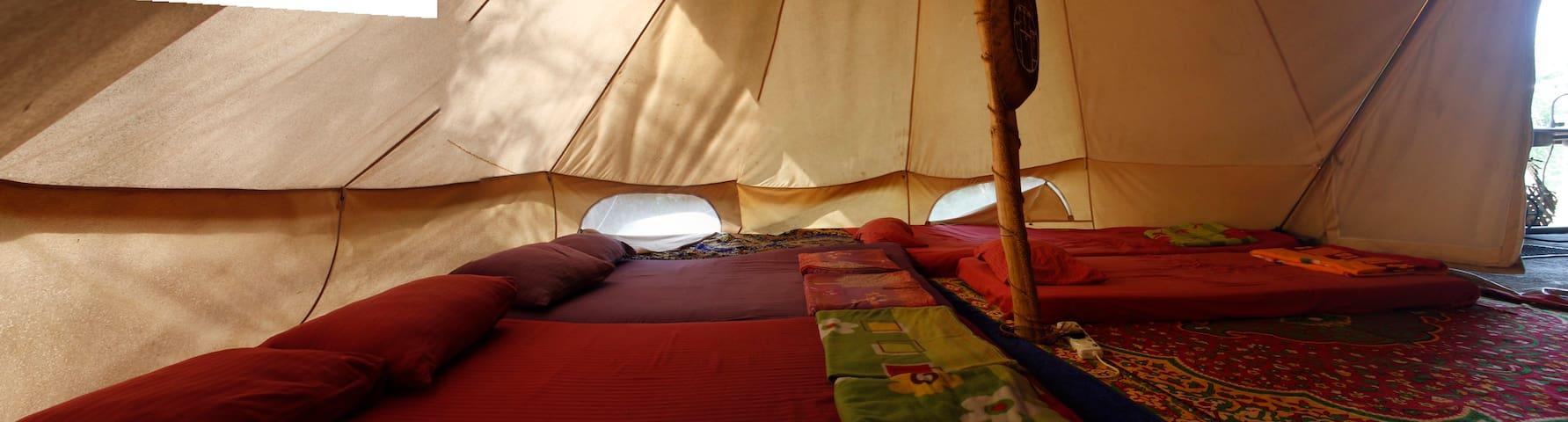 Jungle Vista - Sleep in a Teepee (Tent Big)