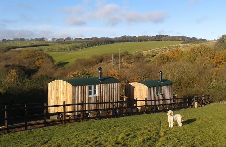 Hide & Sea - Shepherds Hut in our meadow