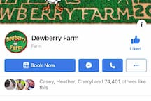 30 minutes away from Dewberry Farm with a huge Pumpkin Patch and Corn Maze! Open in October