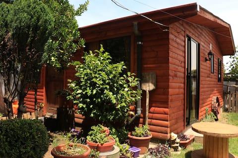 Cottage rent Loncoche, region Araucania Chile