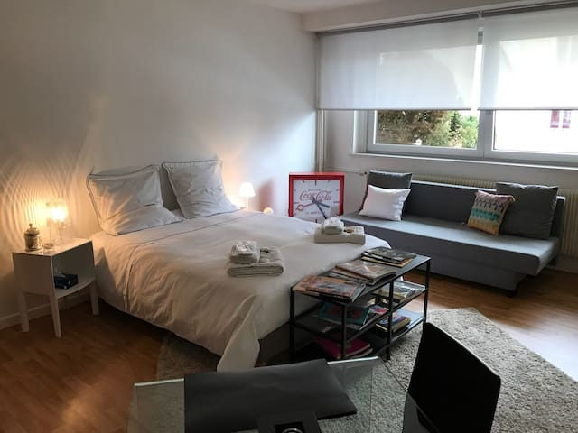 Cosy studio close down town - Riedisheim - Apartament
