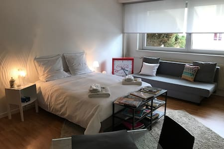 Cosy studio close down town - Riedisheim - Kondominium