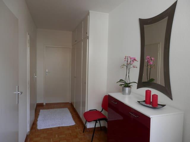 Spacious and cozy studio, 43 m² - Pâquis