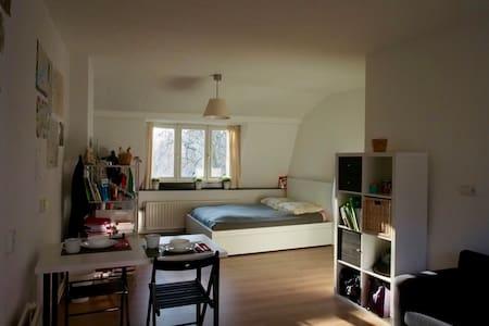 Down town studio - Maastricht - Leilighet