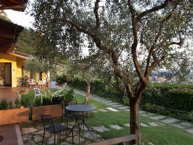 loft among olive trees-hill country-stunning view - Pove del Grappa