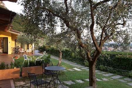 loft among olive trees-hill country-stunning view - Pove del Grappa - Loteng Studio