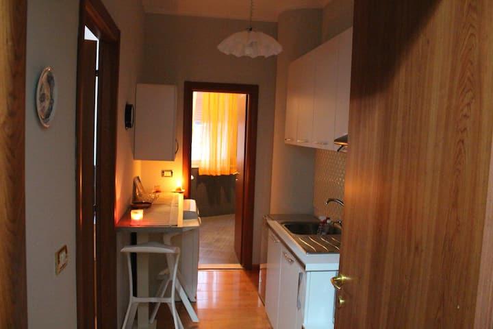 One Bedroom Tirana Apartment with laminate floors