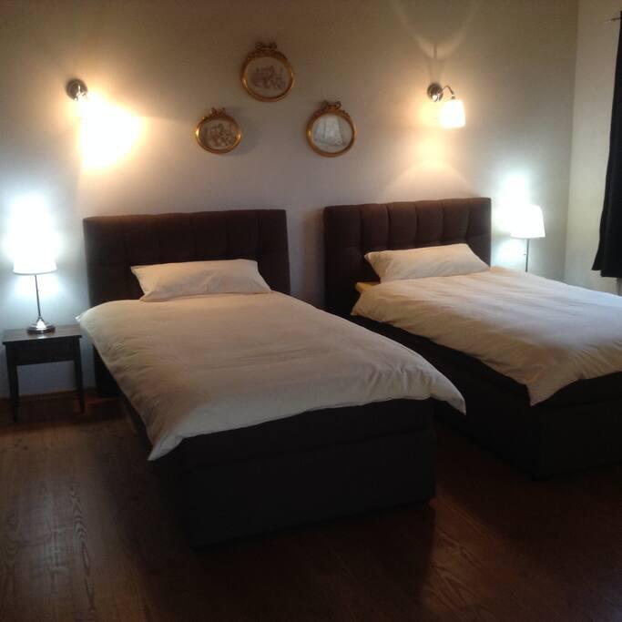 La camera spaziosa con due letti singoli