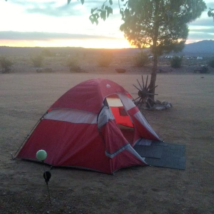 Sylvanie Ranch Camping Zone