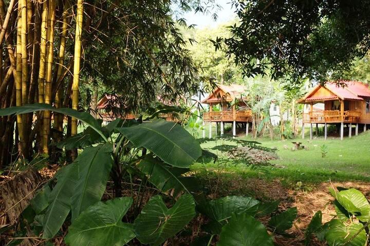 Buhom Mekong Riverside Resort Thai House # 1