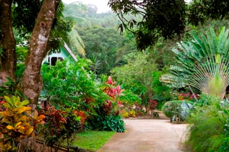Coffeeriver Cottage, The Cottage - Self-Catering - Marigot - Talo