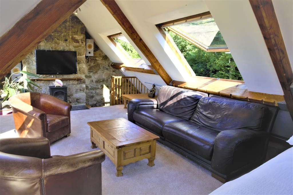 Superb loft conversion doubles as an adult living room and bedroom.