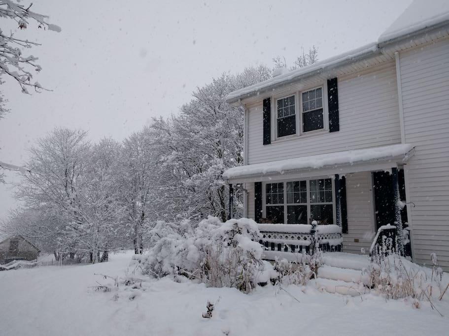 It's winter! But it's warm inside :)