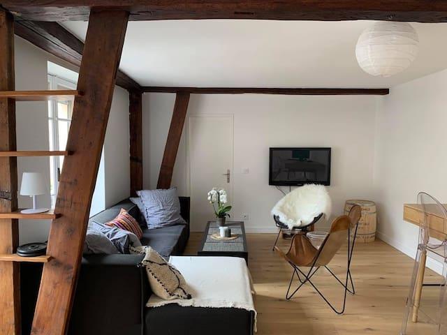 Appartement de charme, à deux pas du château.