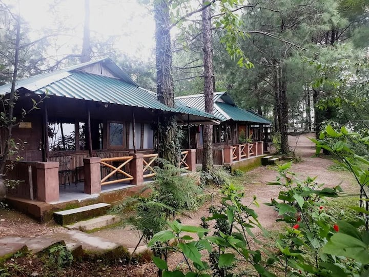 Deluxe Cottage | Spectacular View | Pine Forest
