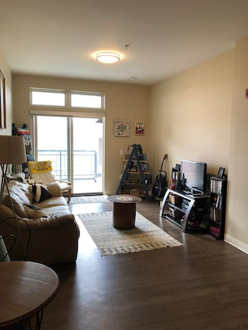 1 Bedroom Pittsburgh Apartment w/ City View