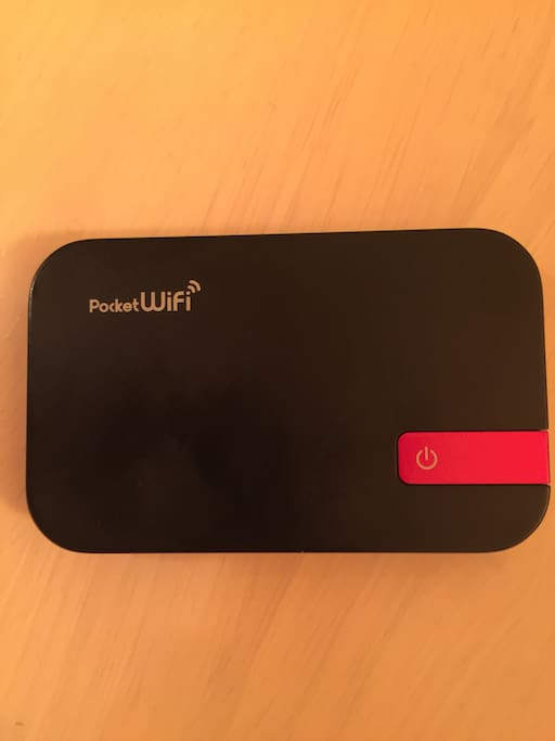 Pocket Wifi is available.