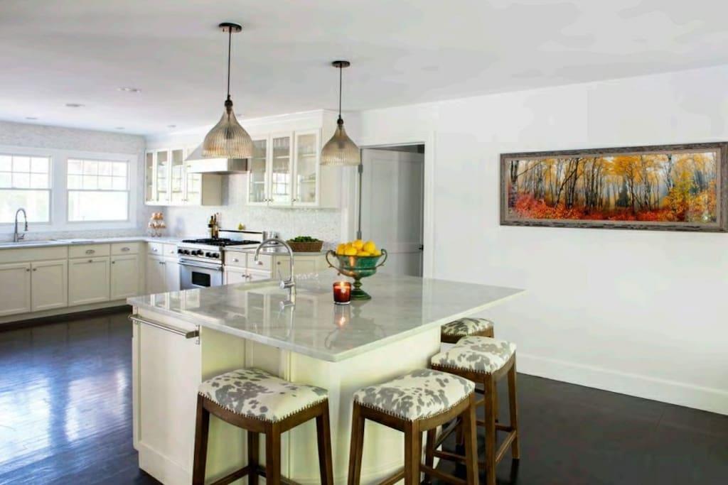 Brand new kitchen renovation with Best In Class Subzero appliances.