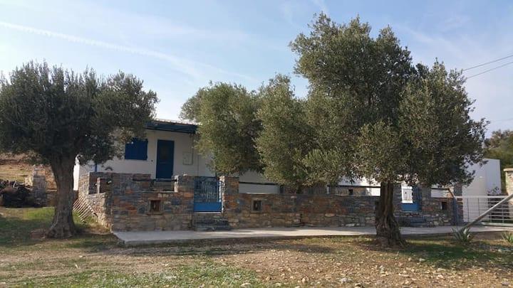 """El Paraiso Moutsouna-Naxos """"vacation for relaxing"""""""