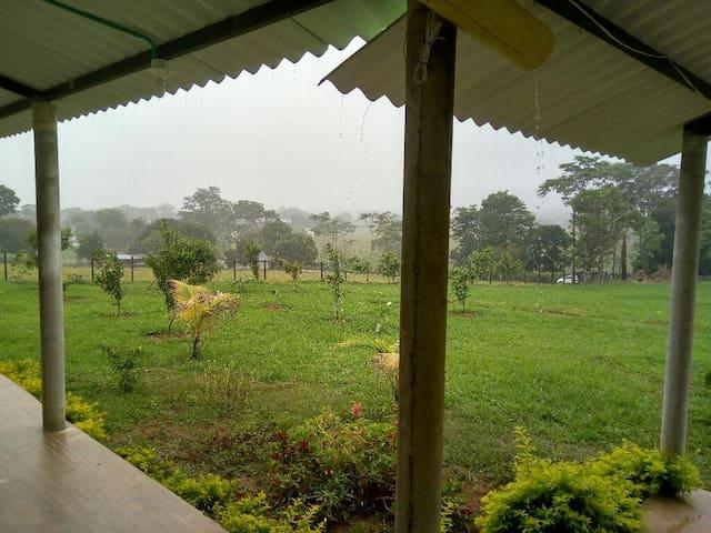 Loma verde