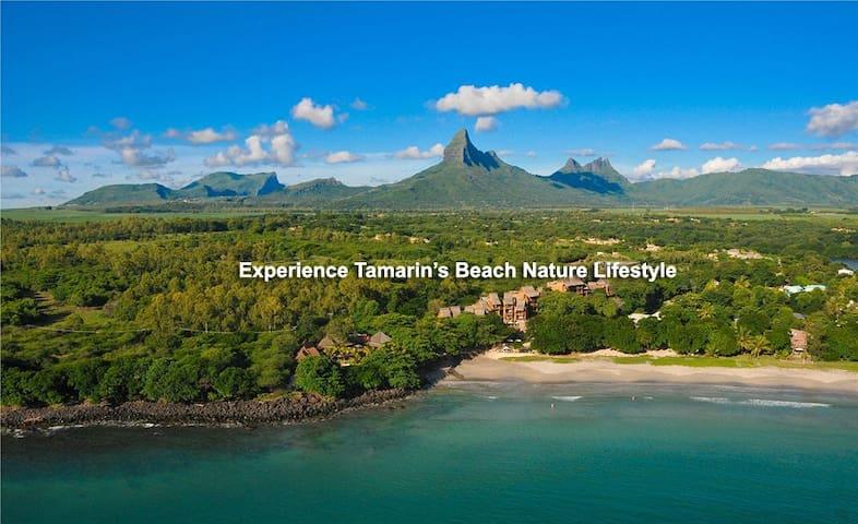 Tamarose Beach Apartment - Tamarin - Lejlighed