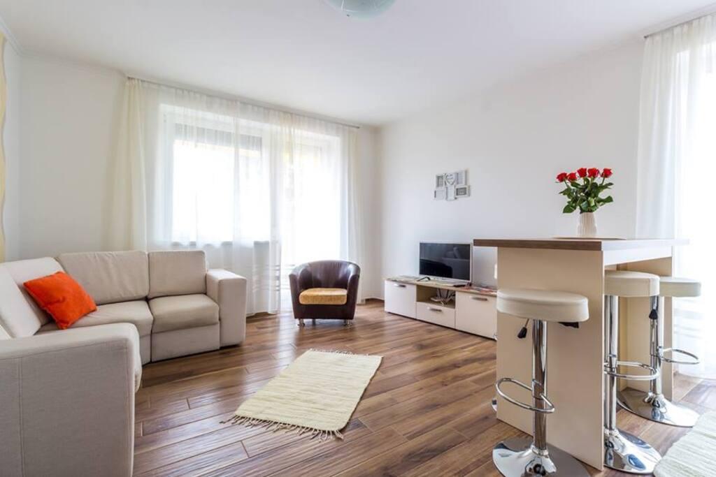 A nappaliban egy kihúzható kanapé 140 cm*200 cm, műholdas tv 1740 csatornával, ingyenes WIFI. – – itt: Aqualiget-Apartmanház