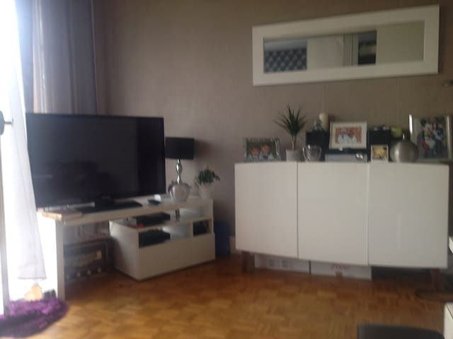 Nice flat in a calm and Green area of Paris, - Le Raincy - Apartament