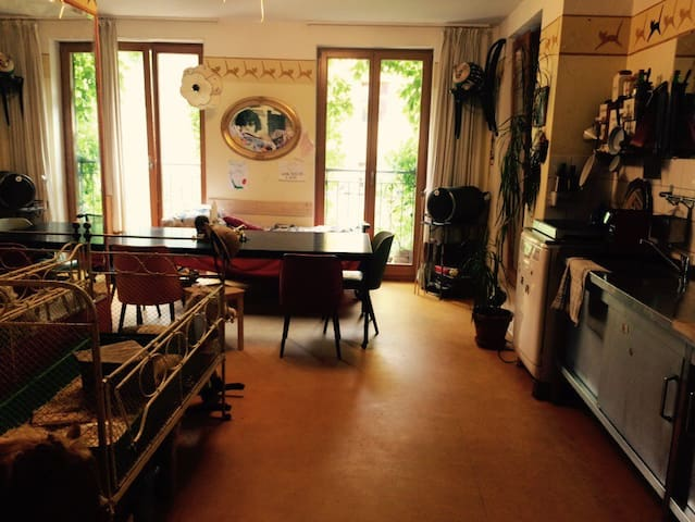 sweet and cosy flat in Berlin-Mitte - Berlin - Apartment