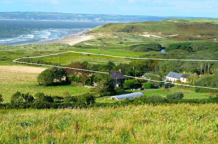 A special Gower Beach house  Delvid Stables