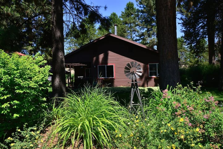 Green Acres - Established Yard - Outdoor Lounge - Fire Pit - Propane Fireplace