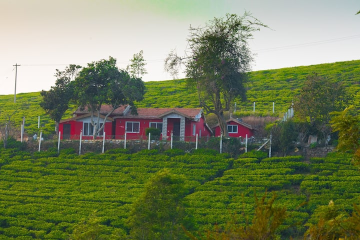 Hillcroft Bungalow - A Hideaway in Tea Gardens