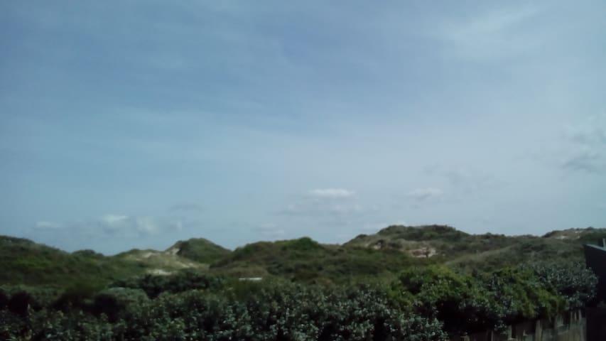 location avec balcon vue sur dune 50m de la plage