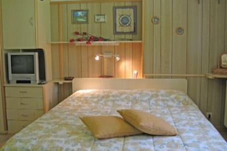 Monolocale luxury a 100 mt dalle piste - Tonale