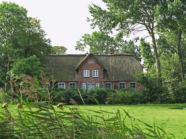 Friesenhof Benen Diken: Ferienwohnung Lütte Deern - Tetenbüll - Departamento