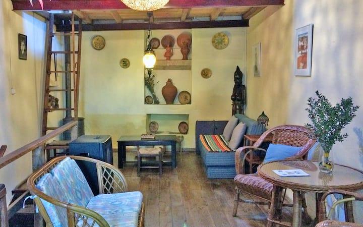 Studioleilighet i Nisa med fantastisk fjellutsikt og Wi-Fi - 160 km fra stranden