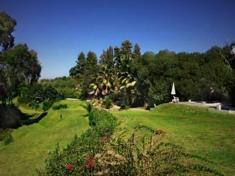 Riverheart Cabana 1 -  a peaceful garden paradise