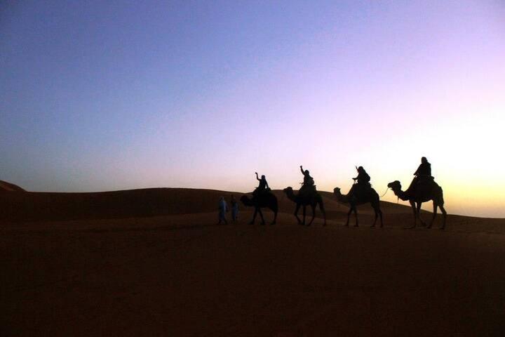 trips from marrakech to sahara desert merzouga