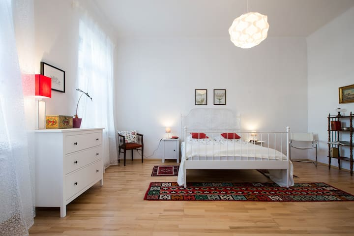 Charming CITY Apartment - Wien - Apartment