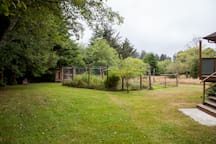 Lush lawns with view of fenced garden with herbs & salad greens. A calming place to meditate & pray. Seasonal blueberries galore.
