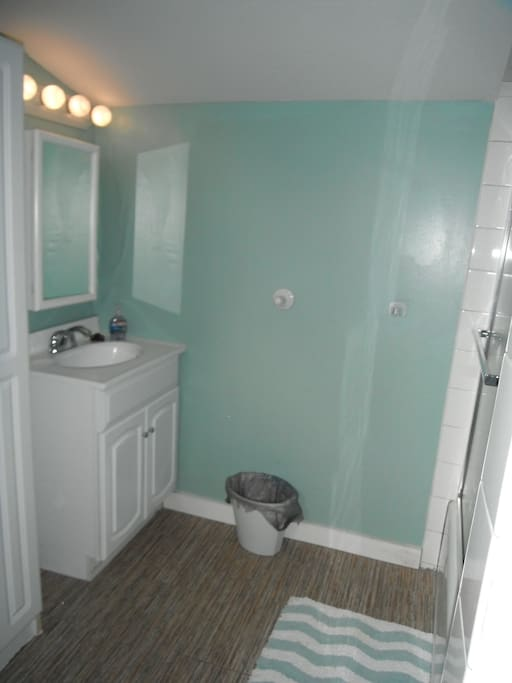 Downstairs Shower and Laundry Room