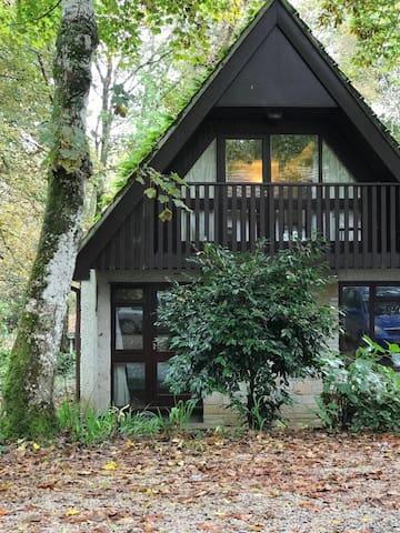 Scandi-inspired Woodland Lodge