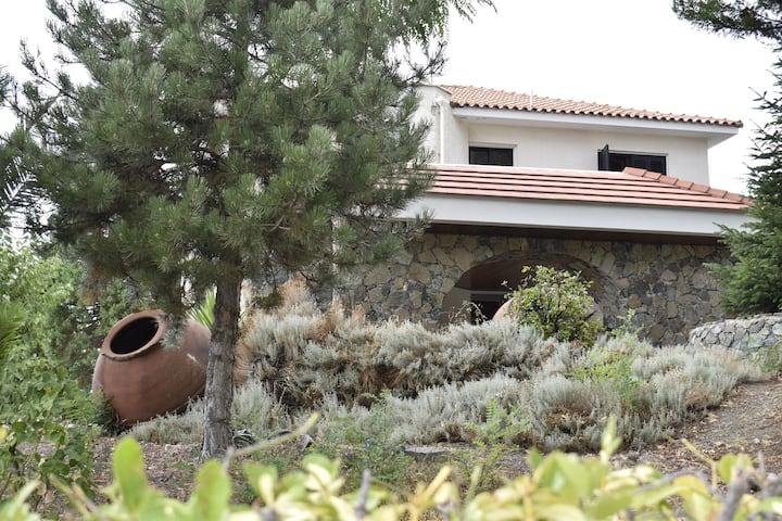 Traditional and Spacious House at Pano Platres