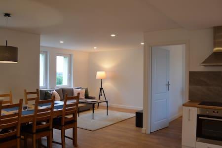 Charming apartment  // DRUSKININKAI