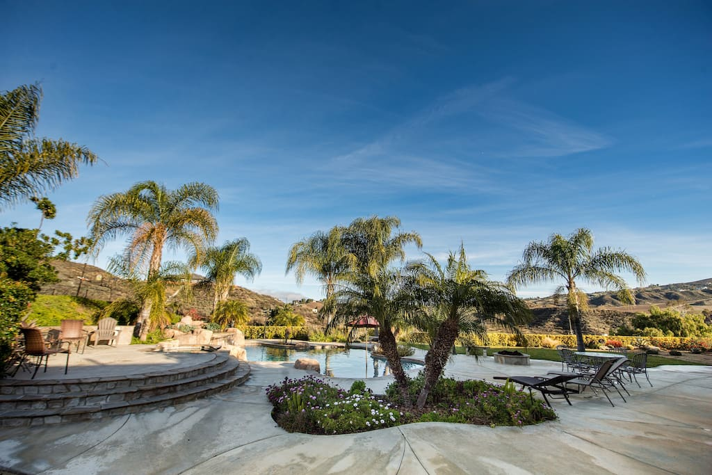 Palms surrounding the pool