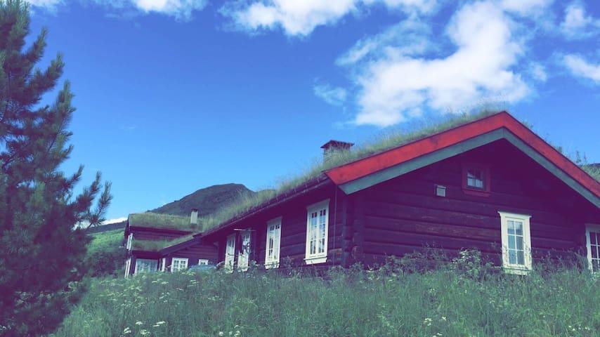 Oppdalshytta - Cozy & family-friendly cabin