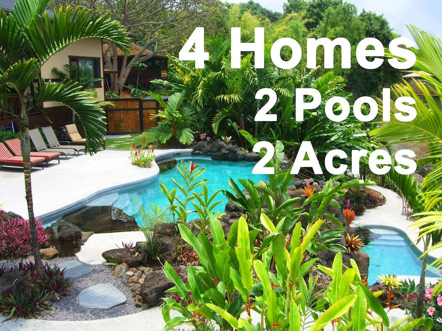 Tropical Paradise 4 Homes 2 Pools 2 Spas 22 32 Houses For Rent In Holualoa Hawaii United